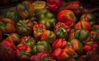 Red Peppers Fine Art Print
