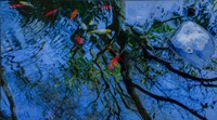 Fish Pond Fine Art Print