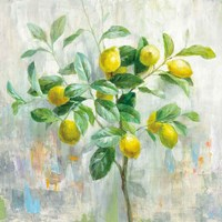 Lemon Branch Fine Art Print