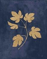 Botanical Study III Gold Navy Fine Art Print