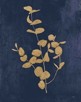 Botanical Study II Gold Navy Fine Art Print