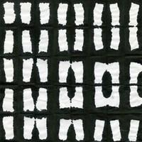 Aquarelle Black and White Square XII Fine Art Print