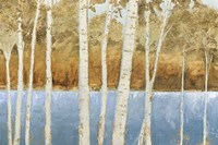 Lakeside Birches Fine Art Print