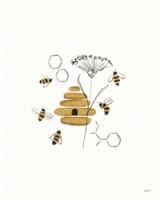 Bees and Botanicals II Fine Art Print