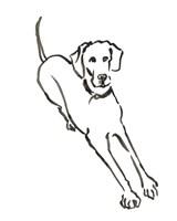 The Dog II Fine Art Print