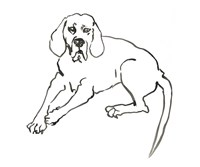 The Dog III Fine Art Print