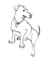 The Dog IV Fine Art Print