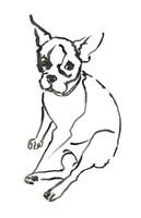 The Dog VI Fine Art Print