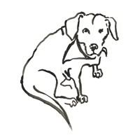 The Dog VII Fine Art Print