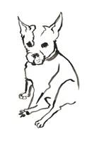 The Dog VIII Fine Art Print