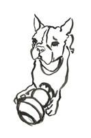 The Dog IX Fine Art Print