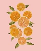 Spring Citrus II Fine Art Print
