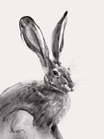 Wild Hare II Fine Art Print