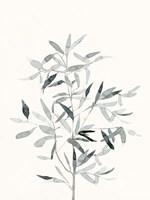 Delicate Sage Botanical VI Framed Print