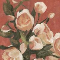 Rose Tangle I Fine Art Print