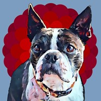 Pop Dog VII Fine Art Print