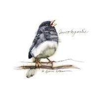 Songbird Study VI Fine Art Print