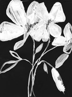 White Whimsical Flowers I Fine Art Print