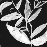 Quirky White Leaves I Fine Art Print