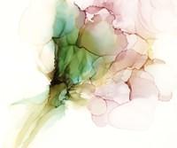 Pink & Turquoise Bloom I Fine Art Print