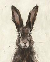 European Hare I Fine Art Print