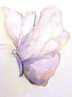 Dulzura Mariposa I Fine Art Print