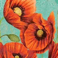 Red Poppies on Teal II Fine Art Print