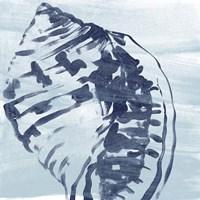 Ocean Study VI Fine Art Print