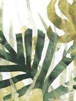 Palm Impression I Fine Art Print