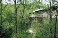 Horton Mill Covered Bridge, Alabama Fine Art Print
