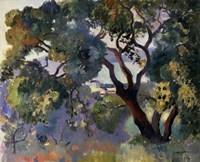 Landscape in Saint-Tropez, 1905 Fine Art Print