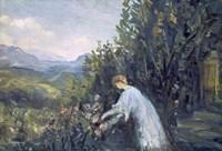 Lady in the Garden, 1909-1911 Fine Art Print