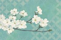 Dogwood Blossoms Fine Art Print