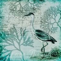 Ocean Treasures Fine Art Print