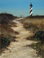 Cape Hatteras Path Framed Print