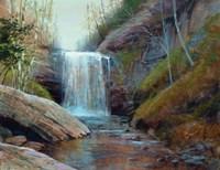Waterfall Fine Art Print