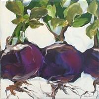 Turnips Fine Art Print