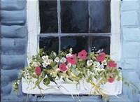 Window Box I Fine Art Print