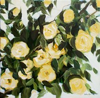 Yellow Roses Fine Art Print