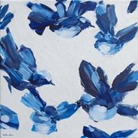 Blue Bird VI Fine Art Print