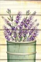 Floral Lavender IV Framed Print