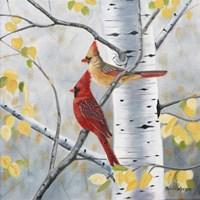 Pair of Cardinals Fine Art Print