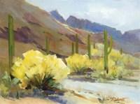Cactus Fun Fine Art Print