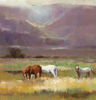 Field of Horses Fine Art Print