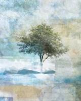 Tree Abstract II Fine Art Print