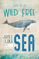 Wild & Free Fine Art Print