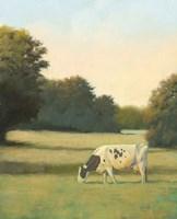 Morning Meadows I Fine Art Print