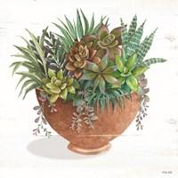 Terracotta Succulents II Fine Art Print