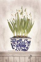 Blue and White Daffodils II Fine Art Print