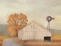 Fall Barn in Muir Framed Print